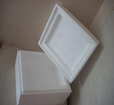 eps-box-image-1024x768